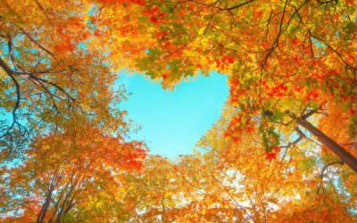 Jesienna pogoda. Sposoby nadobre samopoczucie